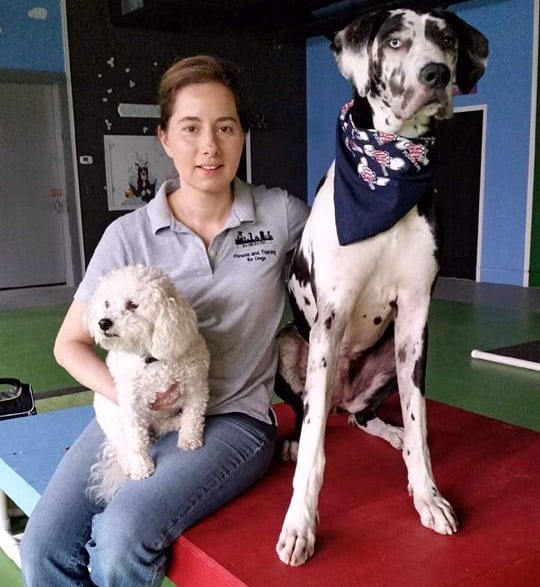 Michele and Dogs Sitting